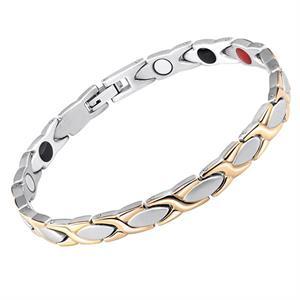 Titanium Magnet Silver/Gold Flet.